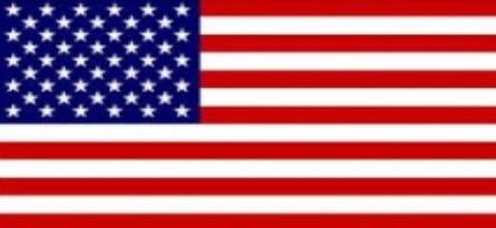 FLAG USA 1
