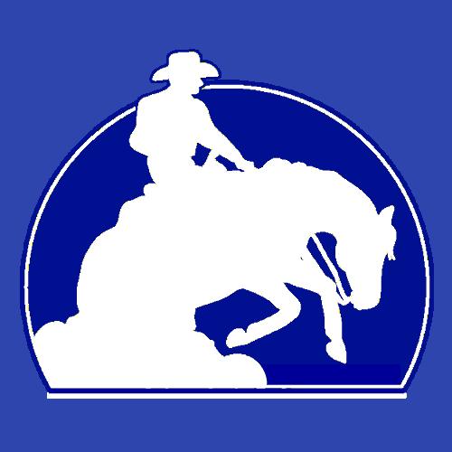 ROC™ Show Horses